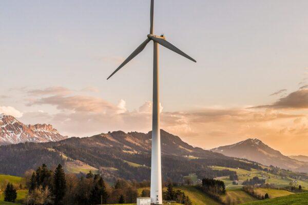 Windenergie von angeblichen Rotmilanen und tatsächlichen AKWs ausgebremst