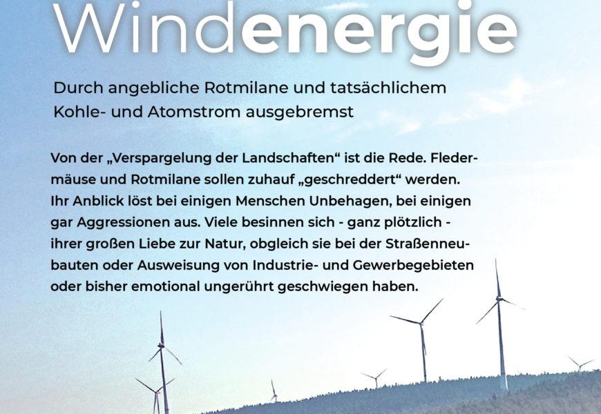 Ausgebremste Windenergie
